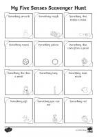 Five Senses Scavenger Hunt Activity Sheet