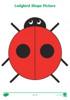 2D Shape Ladybird Picture Activity Sheets