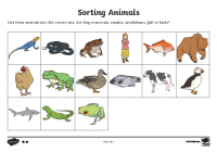 Sorting Animals into Sets Middle Ability