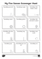 Five Senses Scavenger Hunt Activity Sheet