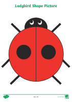 2D Shape Ladybird Picture Activity Sheets