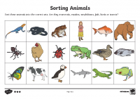 Sorting Animals into Sets Higher Ability