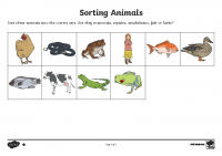 Sorting Animals into Sets Lower Ability