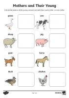 t-t-5679-mothers-and-their-young-farm-animals-matching-activity_ver_4
